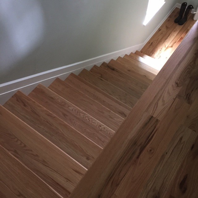 Oak stair treads and solid wood floors freshly installed and finished